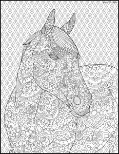 Сложная раскраска Лошадь с мелким орнаментом