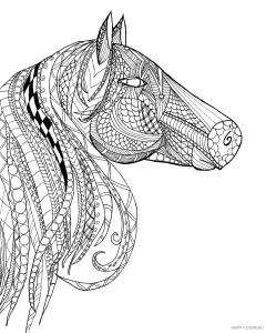 Голова лошади