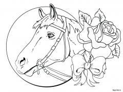 Лошадь с розой