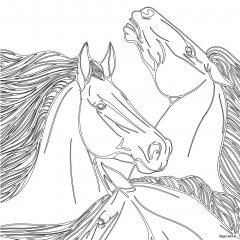 3 лошади