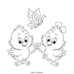 Раскраска цыплята и бабочка