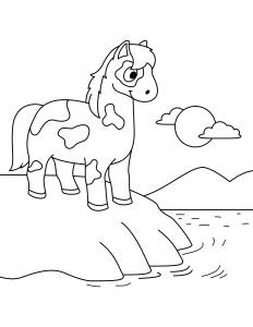 Лошадка на Берегу