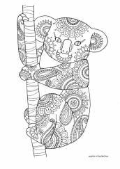 Милая коала раскраска антистресс распечатать в хорошем качестве