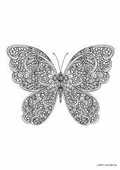 Раскраска антистресс бабочка