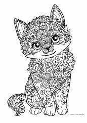 Раскраска антистресс котенок