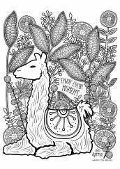 Раскраска антистресс лама и цветы