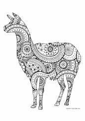 Раскраска антистресс лама