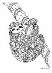 Раскраска антистресс ленивец