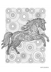 Раскраска антистресс лошадь на фоне цветов