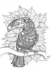 Раскраска антистресс попугай в листьях