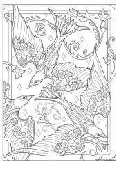Раскраска антистресс птицы в цветах