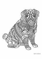 Раскраска антистресс собака с узором