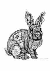 Раскраска антистресс заяц