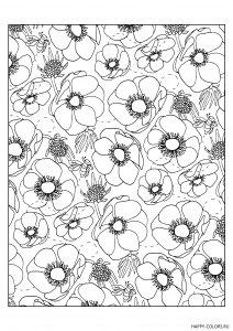 Цветы маки с пчелками