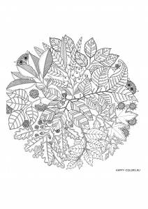 Листья и две совы
