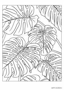 Листья пальмы