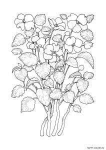 vysokie-cvety-raskraska-antistress-raspechatat-format-A4