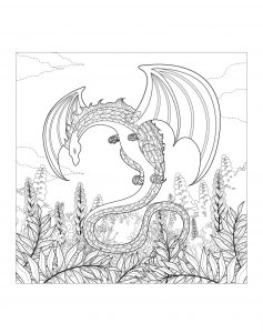 Raskraska-drakon-19