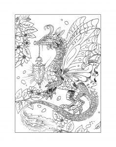 Raskraska-drakon-24