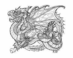 Raskraska-drakon-26