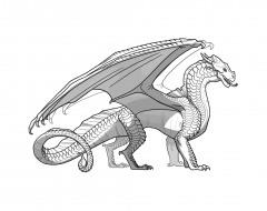 Raskraska-drakon-29