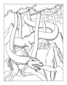 Raskraska-drakon-4