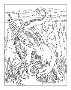 Raskraska-drakon-8