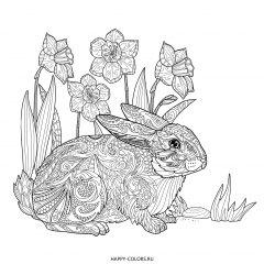 Раскраска антистресс заяц и цветы
