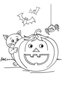 Раскраска Хэллоуин Тыква и Котенок