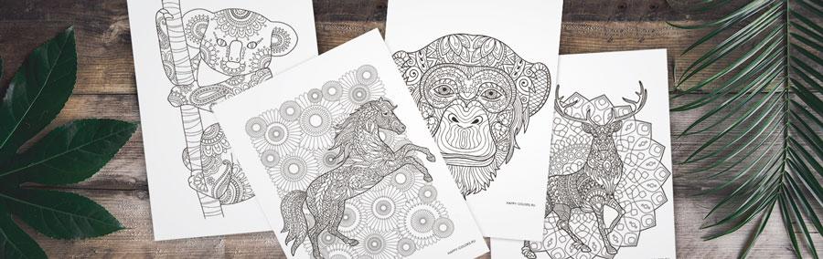 Распечатать раскраски антистресс с животными